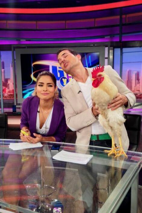 Un día antes, Enrique Santos llegó con todo y un gallo para presentarnos...