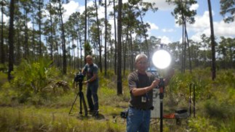 Incluso en los Everglades, se tomó el mayor cuidado para iluminar bien l...