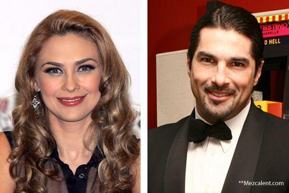 En abril de 2011 Aracely Arámbula y Arturo Carmona sostuvieron un breve...