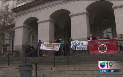 Protestan por controversial ley de semillas