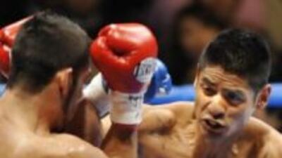 Salgado por su primera defensa del título (HG Boxing)