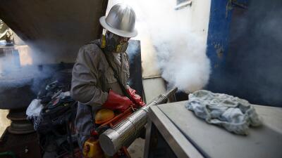 Fumigación en Venezuela