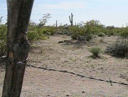 Parte oeste del desierto de Arizona