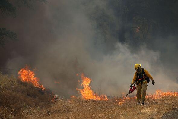 Un bombero quema la hierba seca durante una operación para extinguir el...
