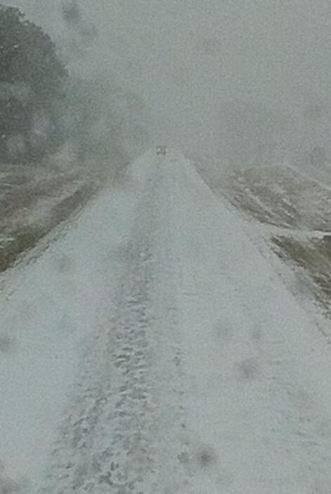 Yadi Martínez nos dice que así quedaron las carreteras en Clanton, Alabama.