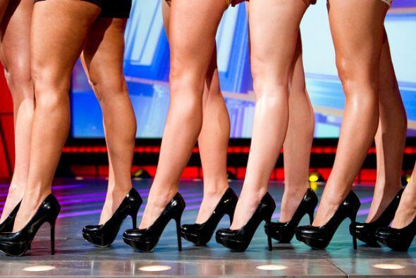 Estas son las candidatas en el concurso Miss Piernas de Sábado Gigante....