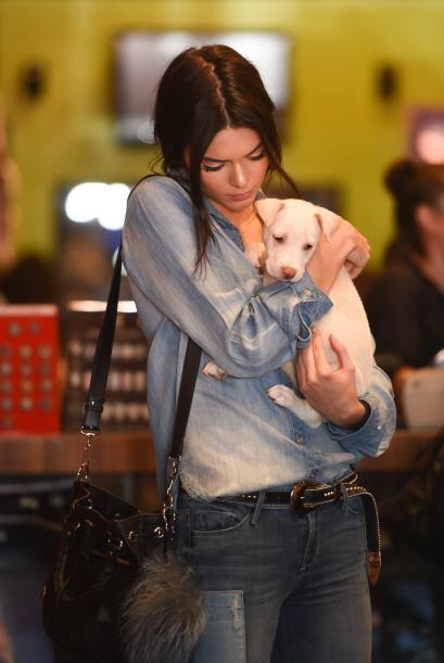 ¿Kendall adoptó un perrito?