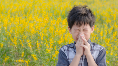 Elevados niveles de polen crean tormenta perfecta para las alergias: cómo mantenerlas a raya
