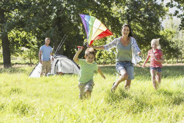 Explorar. Después de instalarse, recorran la zona con los niños, para fa...