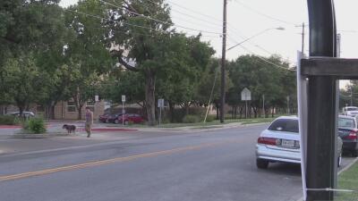 La Policía de Austin busca a un conductor que arrolló a un menor y se dio a la fuga
