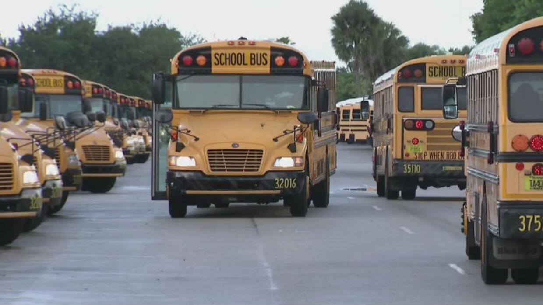 Impulsan ley para instalar alarma en autobuses escolares que eviten el o...