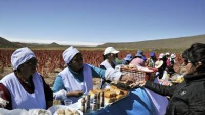 Mujeres bolivianas.