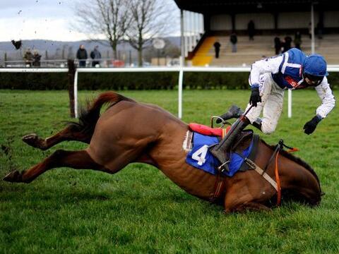 Brendan Powell cae de su caballo Flaming Charmer en la carrera The Higos...
