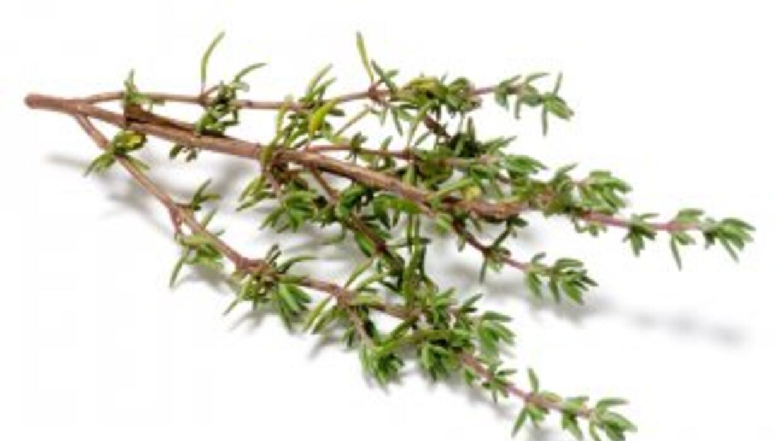 Se usa frecuentemente para dar sabor a las carnes, sopas y guisos.