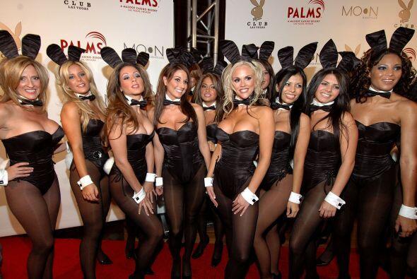 """Las """"conejitas"""" han adquirido gran popularidad y en Halloween hay muchas..."""
