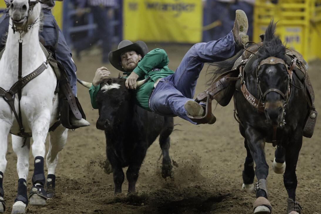 La rudeza e intesidad de los Nacionales de Rodeo en Las Vegas AP_1634416...