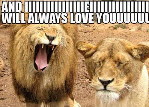 """""""And IIIIIIIIIIIII will always love you""""."""