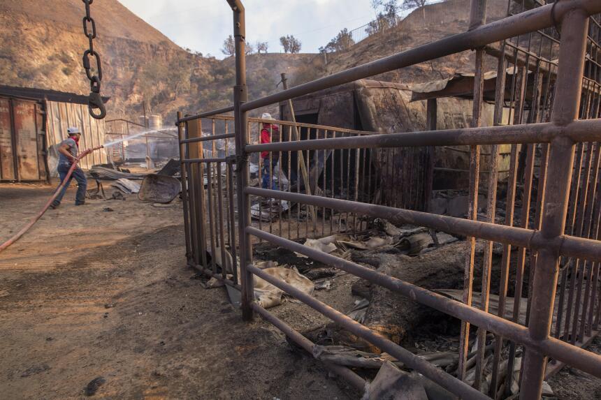 Anthony Martin apaga los remanentes del fuego Creek que mató varios caba...