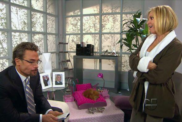 """""""Una Familia con suerte"""" combina magistralmente el drama ejecutivo, el c..."""
