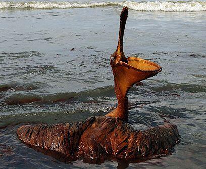 El costo de la limpieza. Tony Hayward, director ejecutivo de BP, dijo en...