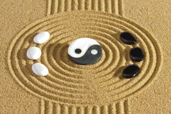Así vemos por ejemplo que la pasividad es yin, y la acción es yang, cuan...