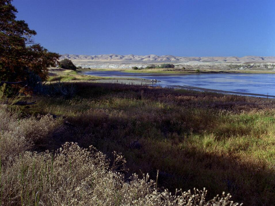 Hanford Reach (Washington)