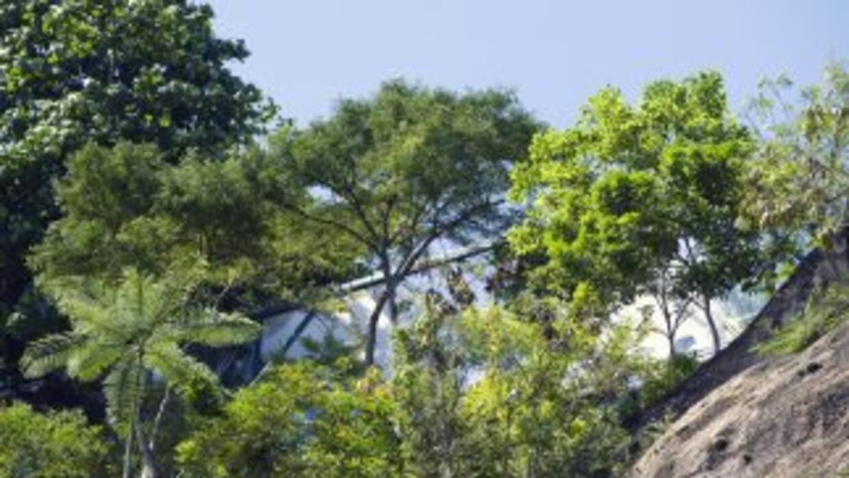 Un avión de la Fuerza Aérea de Brasil se estrelló el martes en el surest...