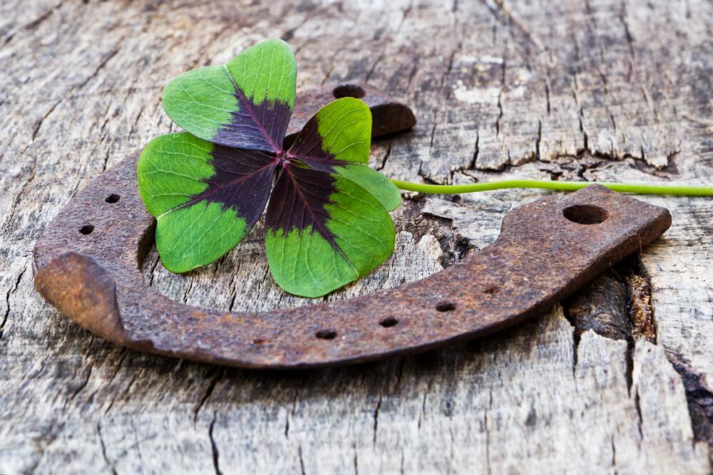amuleto suerte trebol y herradura
