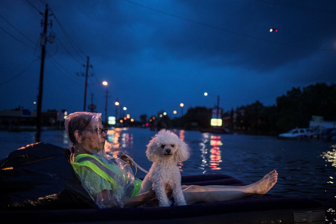 Una mujer y su mascota sobre una balsa inflable esperan por un helicópte...