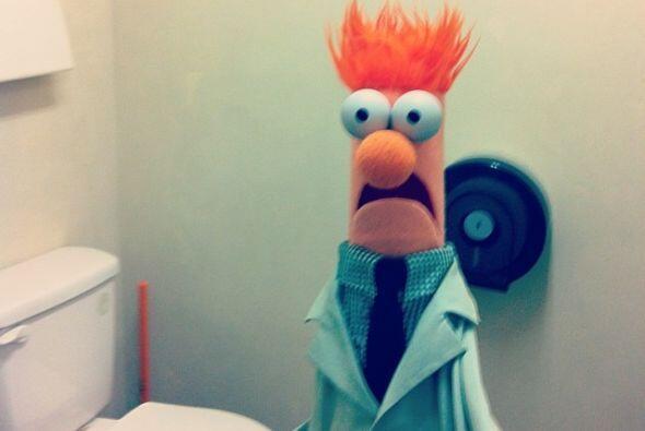 Animal, el bromista del grupo, sorprendió al científico Beaker en el mom...
