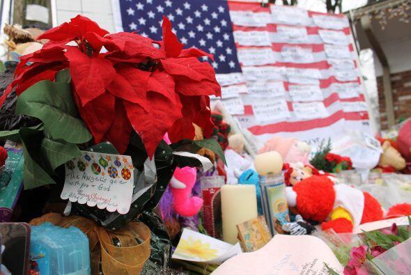 Del total de las víctimas, 20 ean niños y seis eran adultos. Fotografías...