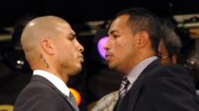 Cotto y Mayorga pelearán a 12 rounds el 12 de marzo en Las Vegas, estand...