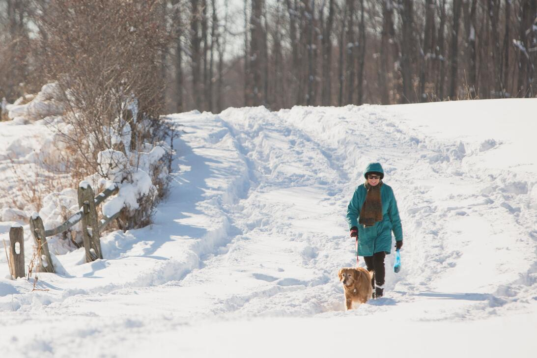 A woman and a dog enjoy snow after the first lake-effect snowfall of the...