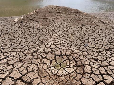 Una sequía ha arrasado sin piedad algunas zonas de Honduras en lo...