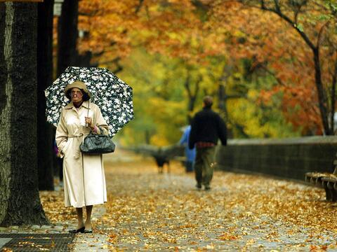Aprovecha esta hermosa época para pasear por la ciudad y las afue...