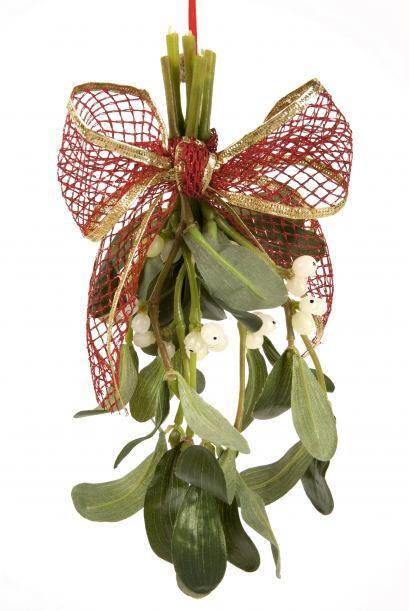 Muérdago DIY. Esta planta tradicional se llevará de maravilla con la dec...