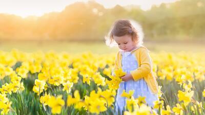 15 flores que te traerán buena suerte