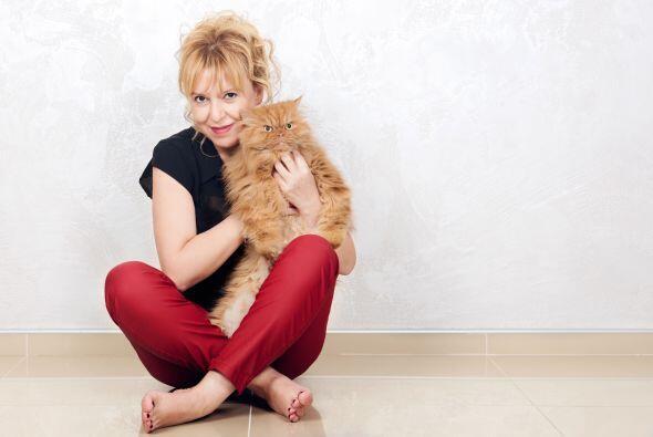 Hulya Ozkok, de 46 años, es la dueña de este curioso gato.