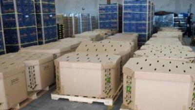 Los paquetes de marihuana estaban ocultos en estas cajas