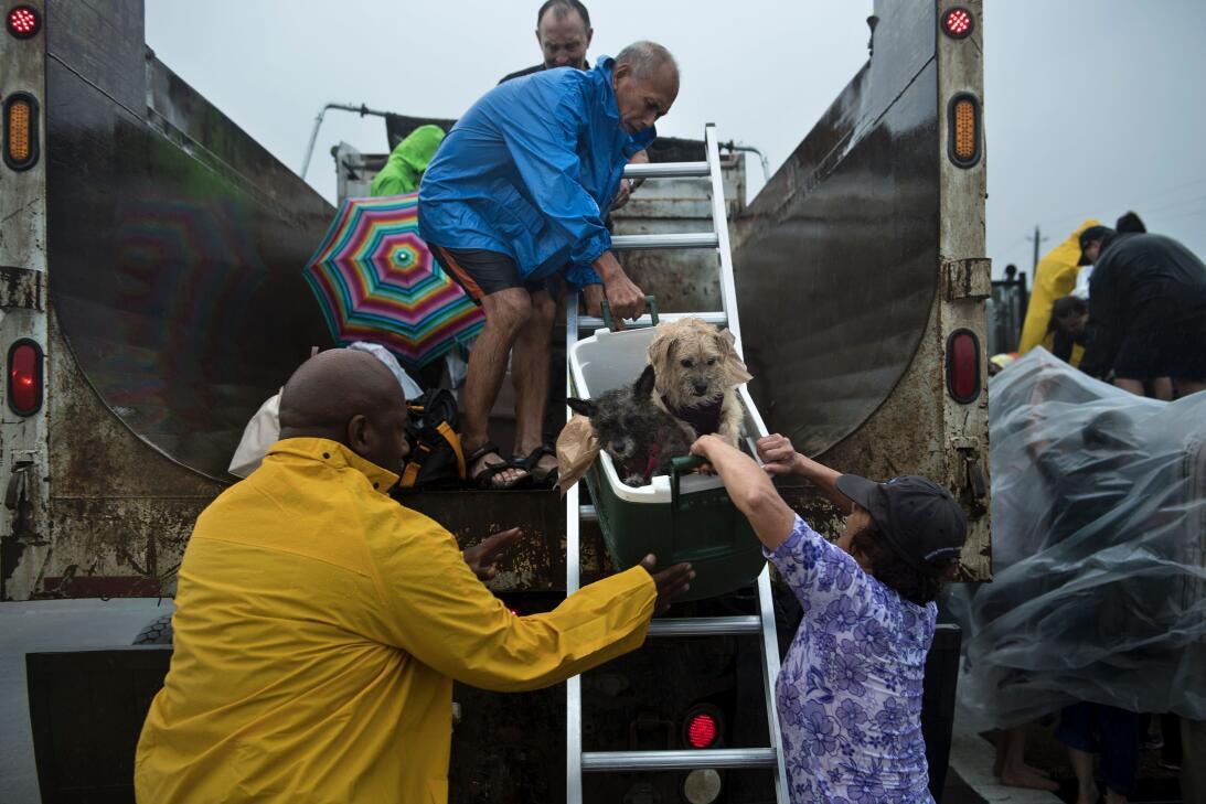Un operativo de evacuación en Meyerland, al suroeste de Houston.