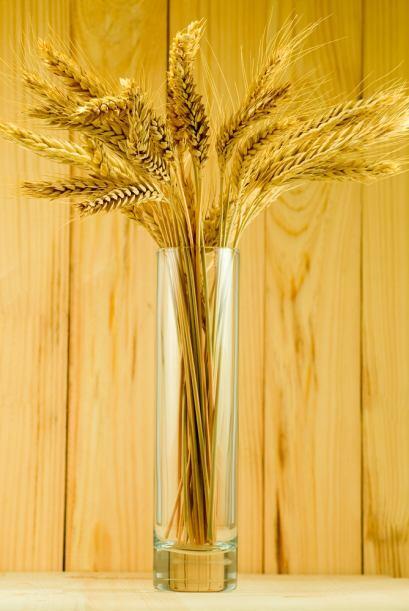 Capricornio  Las flores secas dispuestas en un jarrón elegante, espigas...