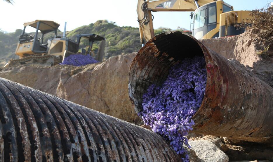 """Preparativos la obra """"Petal Drop LA"""" en una zona industrial de Los Ángeles"""