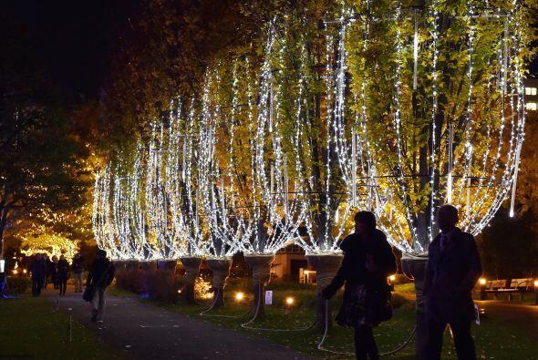 Seguro Tokio atraerá muchos turistas con este ambiente que emana ternura...
