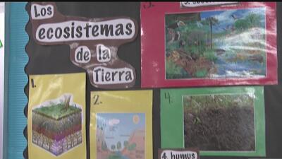 El poder del bilingüismo en los niños