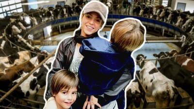 """""""A mí no me ordeñaban"""": la extraña explicación de Shakira a sus hijos sobre la leche de vaca"""