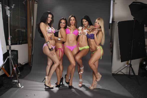 todas las candidatas a Miss Pechonalidad en Sábado Gigante