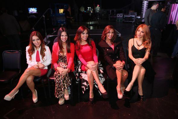 Aquí las guapas chicas, minutos antes de conocer a sus nuevas compañeras...
