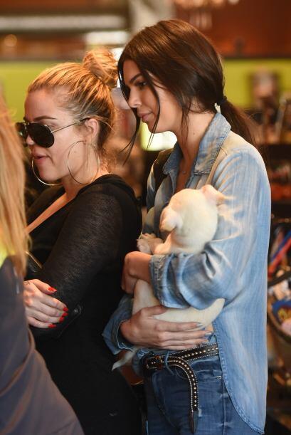 En definitiva, Kendall quería que ese animalito se uniera a la familia K...