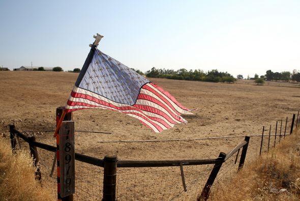 Sin embargo, se han reportado importantes pérdidas en el área agrícola,...