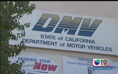 Licencias para todos: realiza tu cita con el DMV por internet
